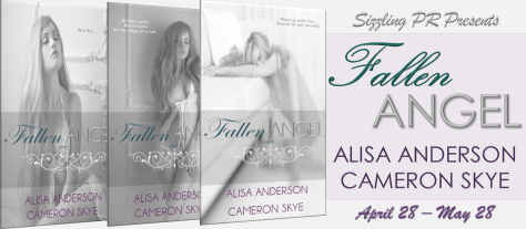 Fallen Angel Tour Banner