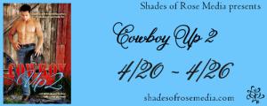 SOR Cowboy 2 VBT 2 Banner